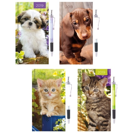 338159--cat-dog-diary-main