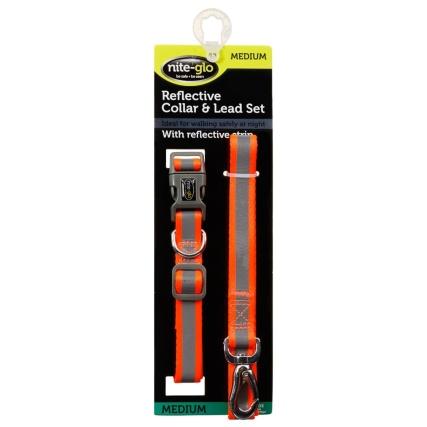 350344-niteglo-reflective-collar-and-lead-set-orange-2