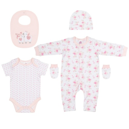 339741-baby-girl-5pc-set-mummy-and-me-group