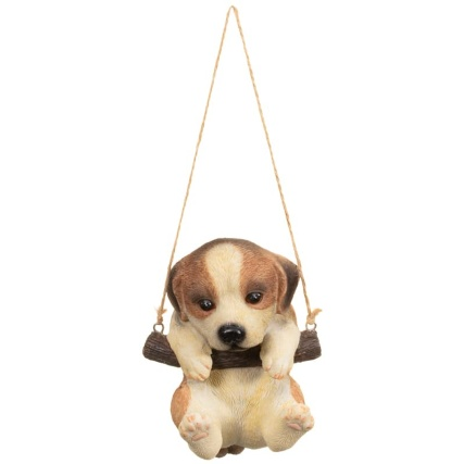 342057-swinging-dogs-brown-and-white