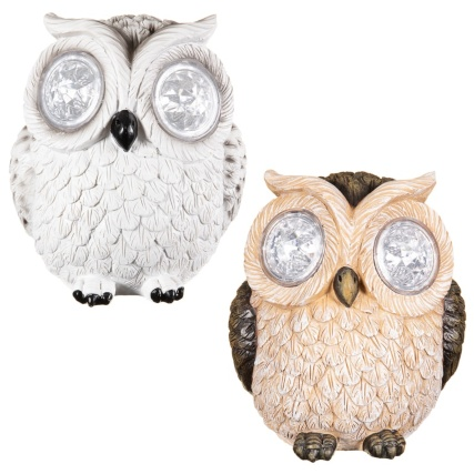 342059-crystal-eyes-owl-group