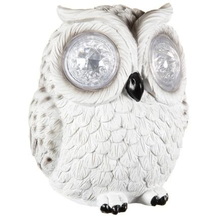 342059-crystal-eyes-owl-white-2