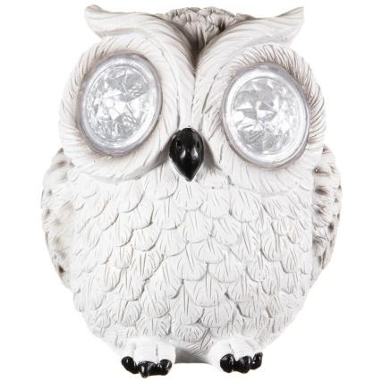 342059-crystal-eyes-owl-white