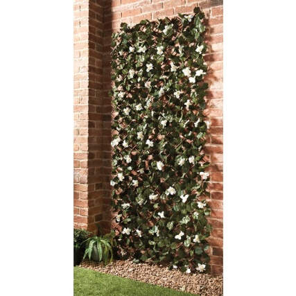 342454-2x1-expanding-leafy-trellis-with-flowers