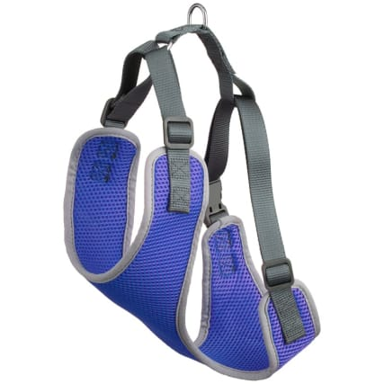 342778-dog-harness-medium-blue1.jpg