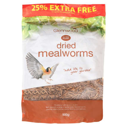 342960-dried-mealworms