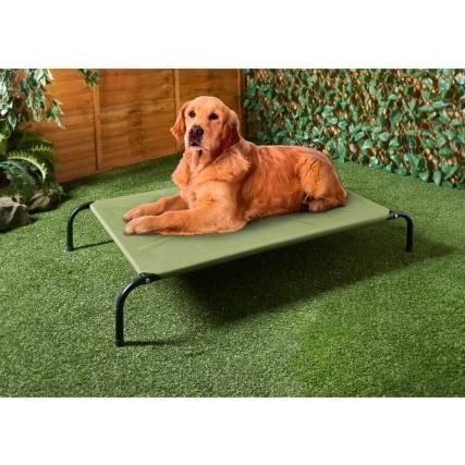 344149-raised-dog-bed-olive