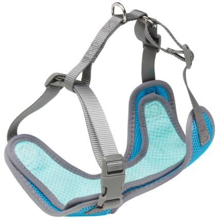 344151-cooling-harness-blue-2