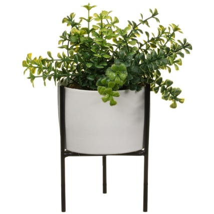 345552-foliage-on-stand