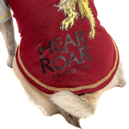 345963-game-of-thrones-dog-tshirt-lannister-4