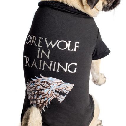 345963-got-game-of-thrones-pet-tshirt-direwolf-in-training