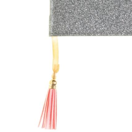 346657-glitter-journal-silver-2
