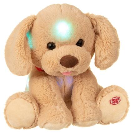 347709-night-time-glow-puppy1.jpg
