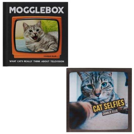 348242-cat-books-cat-selfies.jpg