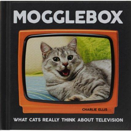348242-cat-books-mogglebox.jpg