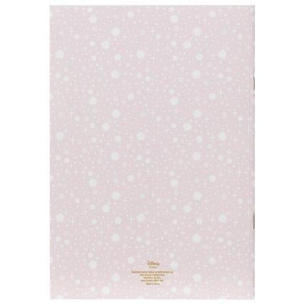 348288-princess-set-of-2-notebooks.jpg