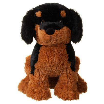 348855-cuddly-puppy-5.jpg