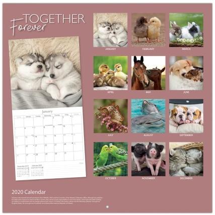 349138-2020-calendar-and-diary-pets-2.jpg