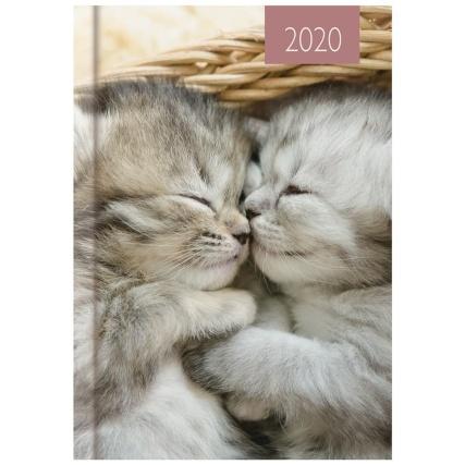 349138-2020-calendar-and-diary-pets-4.jpg