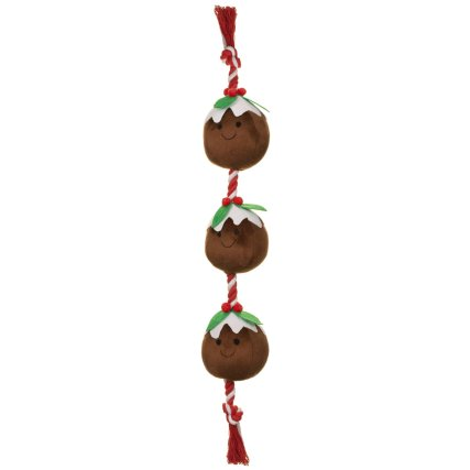 350214-food-on-a-rope-christmas.jpg