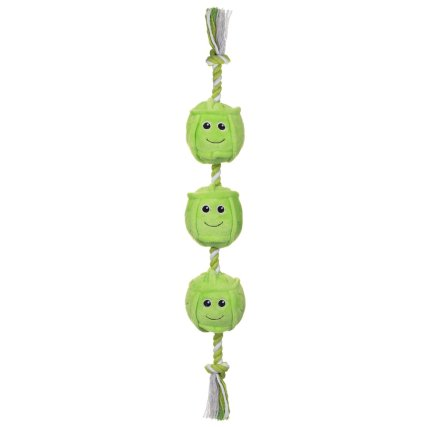 350214-food-on-a-rope-sprouts.jpg