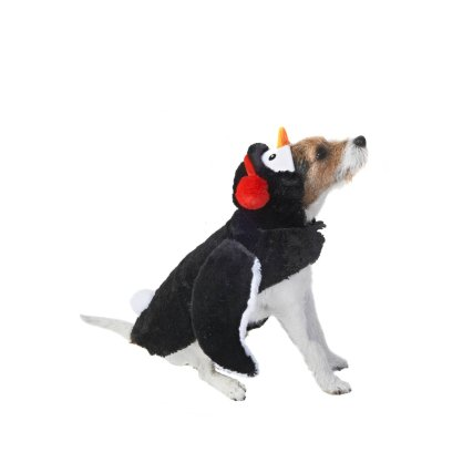 350243-pet-dogs-christmas-outfits-pengiun.jpg