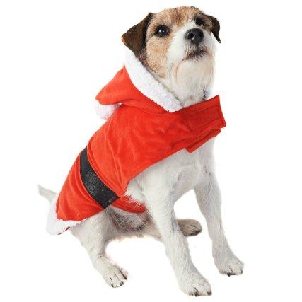 350243-pet-dogs-christmas-outfits-santa-2.jpg