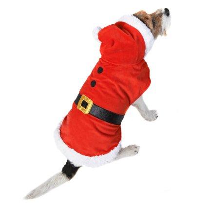 350243-pet-dogs-christmas-outfits-santa.jpg