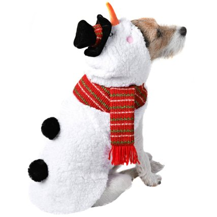 350243-pet-dogs-christmas-outfits-snowman-2.jpg