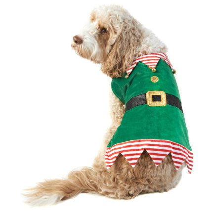 350245-pet-dogs-christmas-outfit-elf.jpg