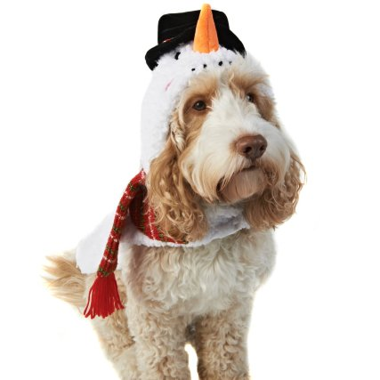350245-pet-dogs-christmas-outfit-snowman-2.jpg