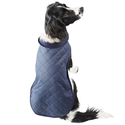 350923-350924-quilted-dog-coat-blue-2.jpg