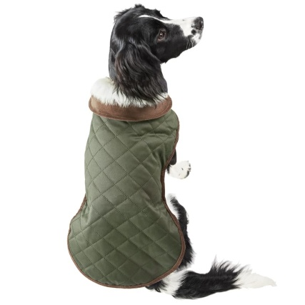 350923-350924-quilted-dog-coat-green-2.jpg