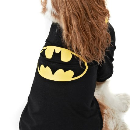 352231-dog-coat-batman-2.jpg