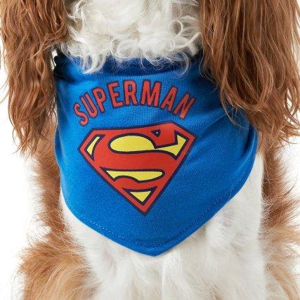 352234-dog-neck-wonder-superman-2.jpg