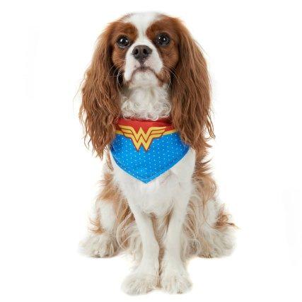 352234-dog-neck-wonder-woman.jpg