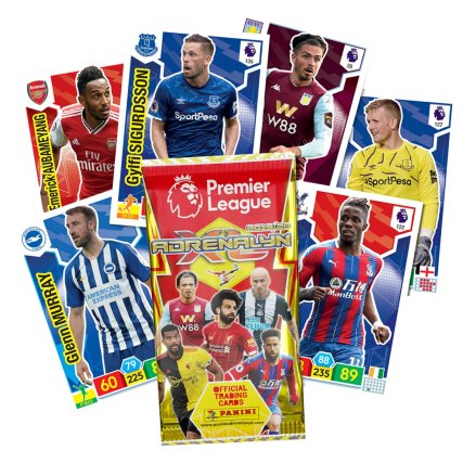 354300-panini-cards-premier-league.jpg