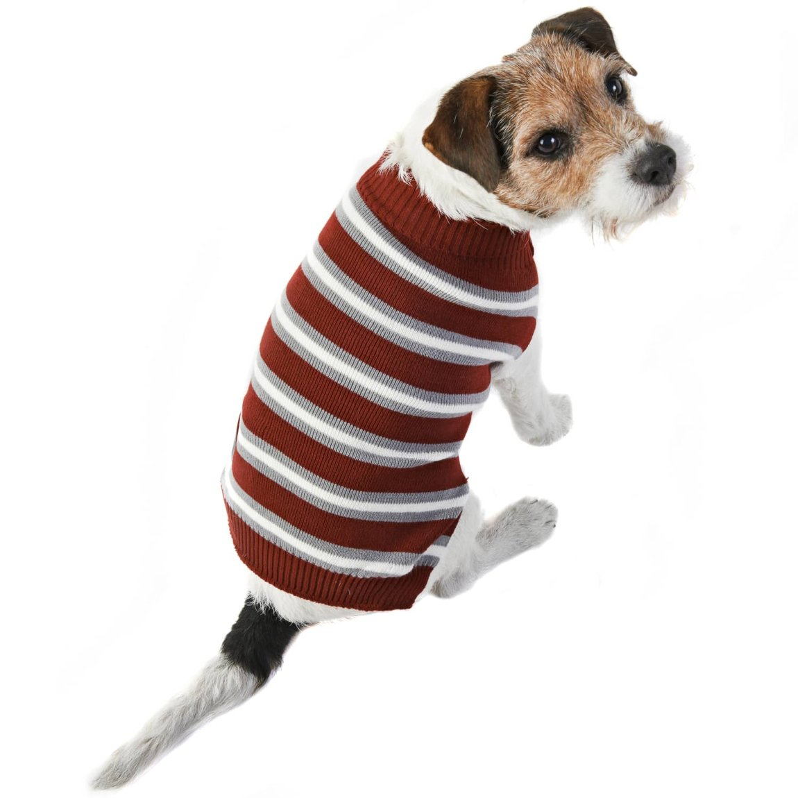 Doggy Jumper - X-Small - Small - Stripes