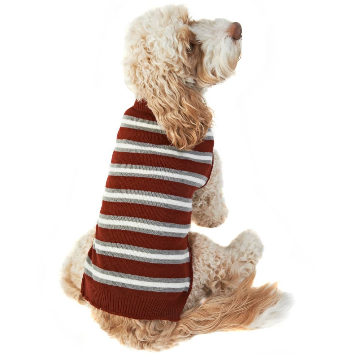 Doggy Jumper - Medium - X-Large - Stripes