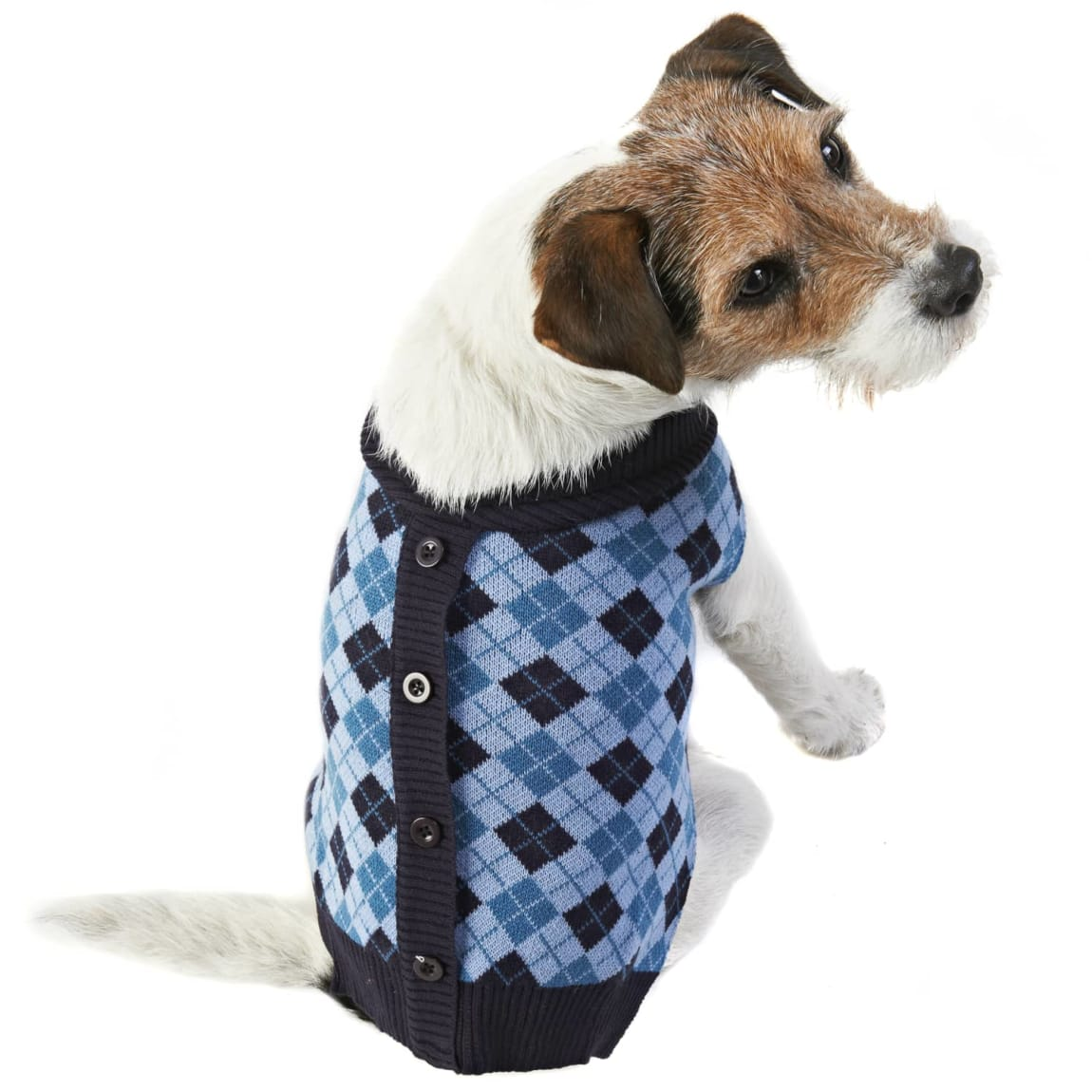 Doggy Cardigan - Small - Large - Blue