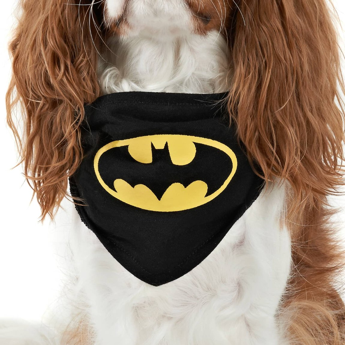 DC Comics Dog Bandana - Batman