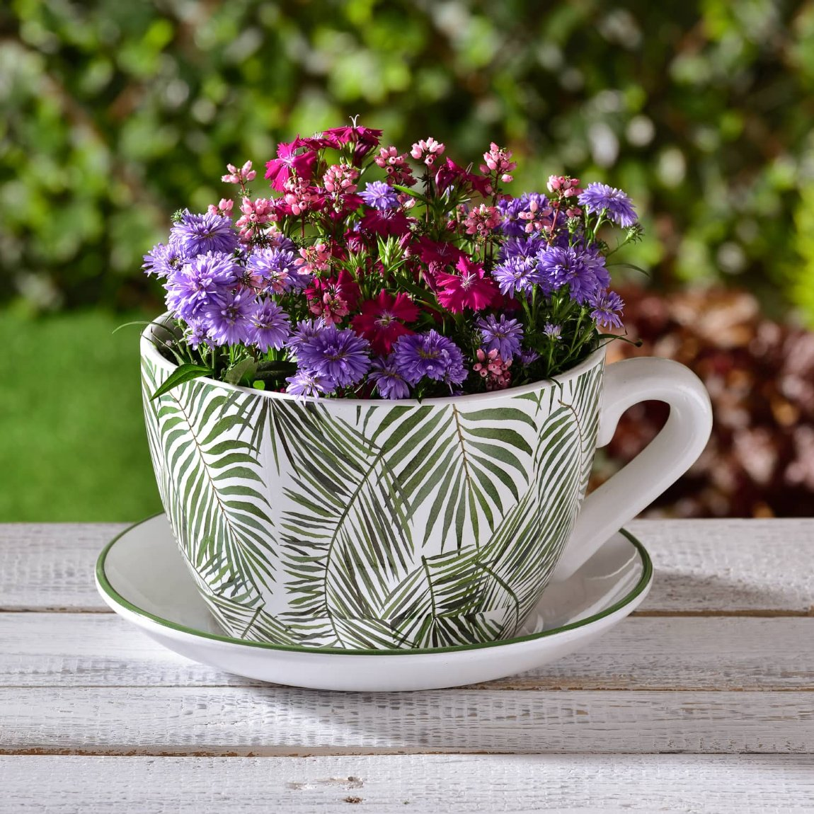 Giant Teacup & Saucer Planter - Palm Leaves