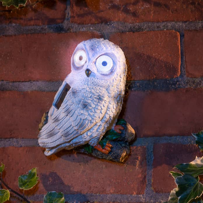 Solar Powered Garden Owl - White