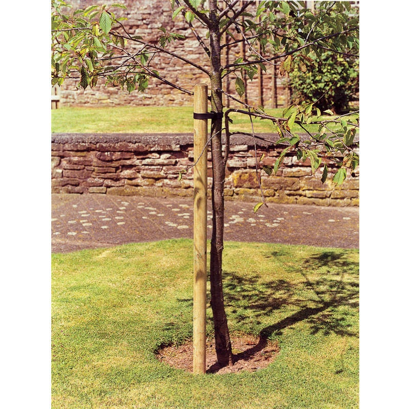 Tree Pole 6ft Fencing Garden Fencing