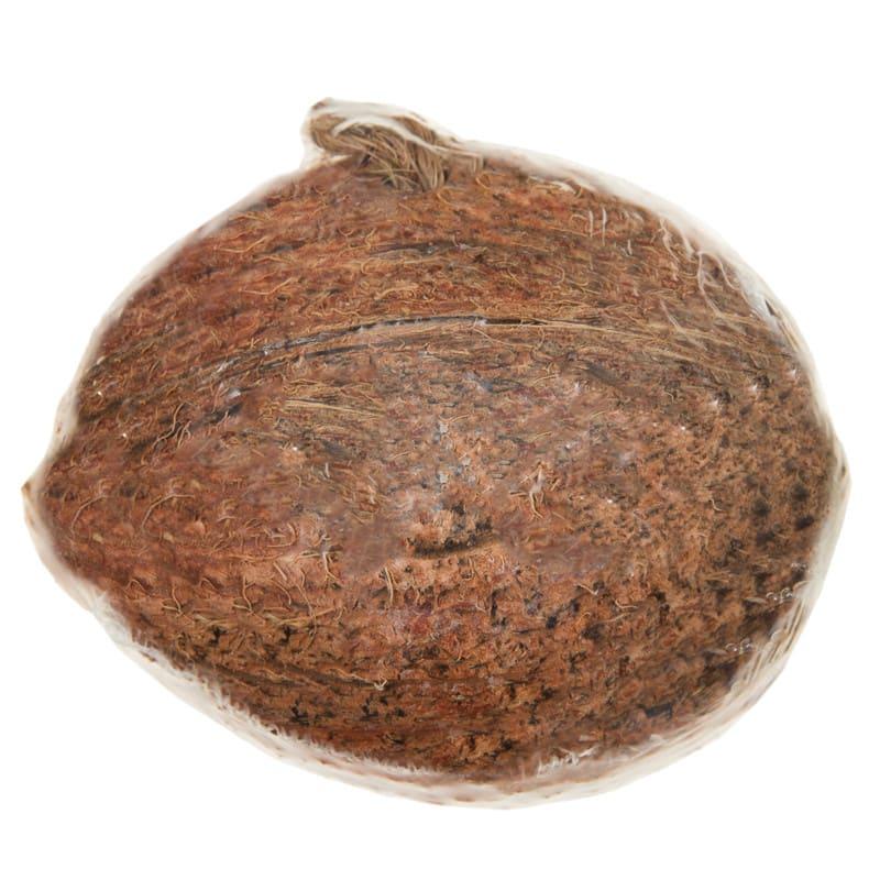 Glennwood Half Coconut Feeder Bird Feed Bird Food