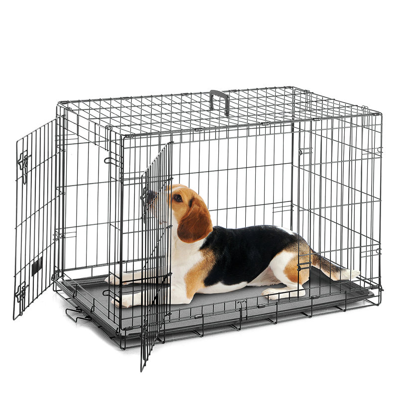 a Dog Cage/Crate