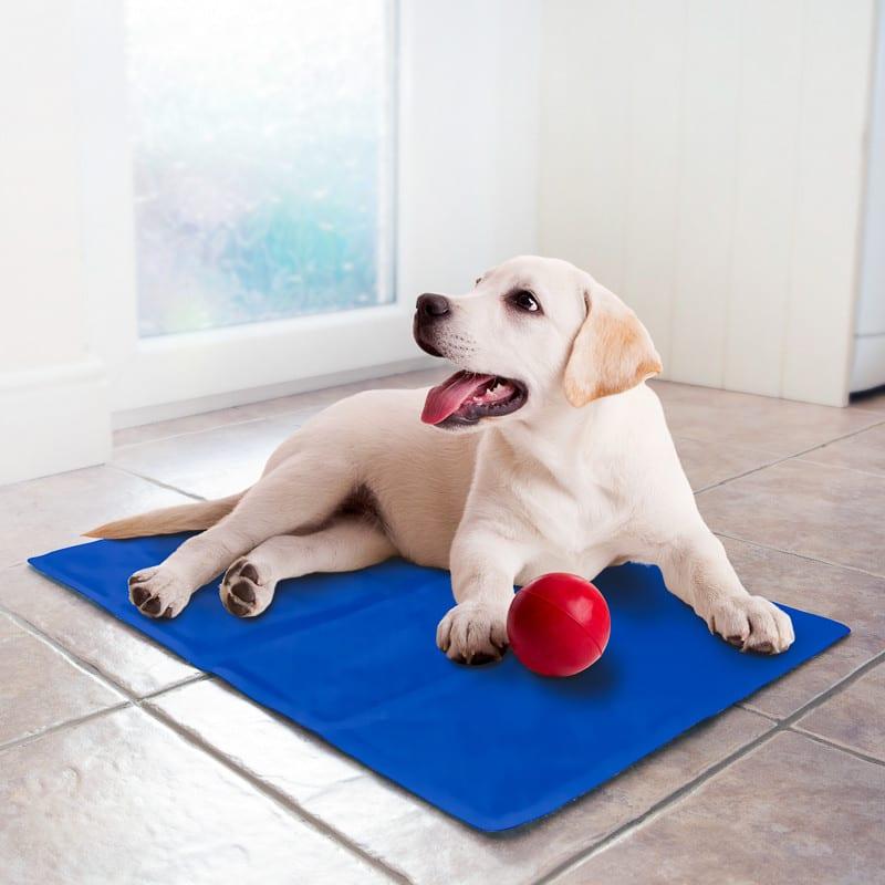 pet cooling mat large dogs cats pet mats b m. Black Bedroom Furniture Sets. Home Design Ideas