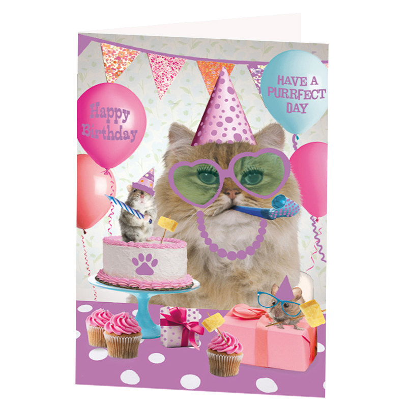 Purrfect Day Birthday Card