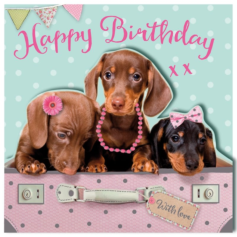 Happy Birthday - Puppies - Birthday Card
