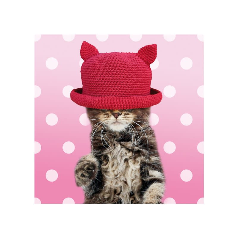 Cat in a Hat Greetings Card